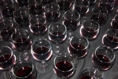 2009_wine_tasting_013_720x480